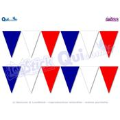 12 stickers FANIONS Bleu Blanc Rouge